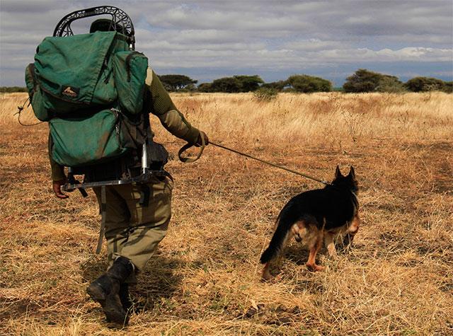 Tanzania Wildlife conservation